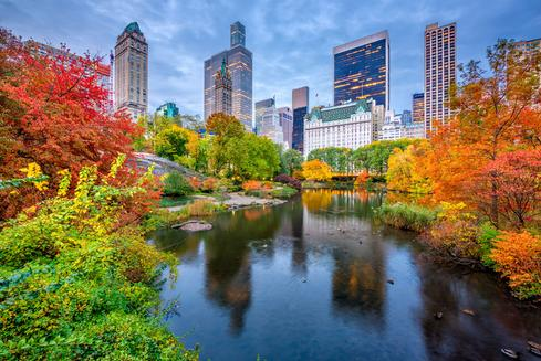 Deals for Hotels in New York