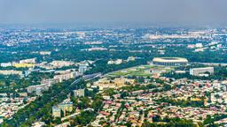 Find cheap flights from Auckland to Tashkent