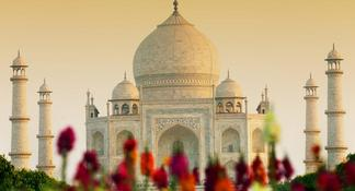 Private Taj Mahal at Sunrise and Agra Day Tour from Delhi