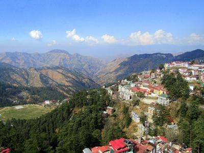 Shimla hotels