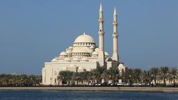 Find cheap flights from Tauranga to the United Arab Emirates