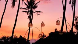Find cheap flights from Nelson to Bali