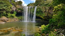 Find cheap flights from South Pacific to Kerikeri
