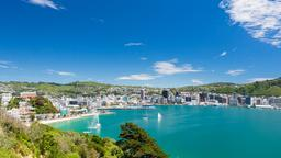 Find cheap flights from Japan to Wellington