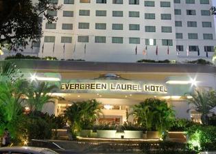 Evergreen Laurel Penang