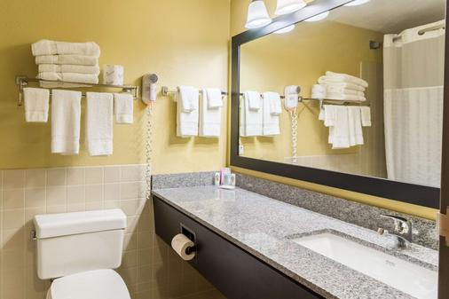 Quality Inn and Suites Mayo Clinic Area - Rochester - Bathroom