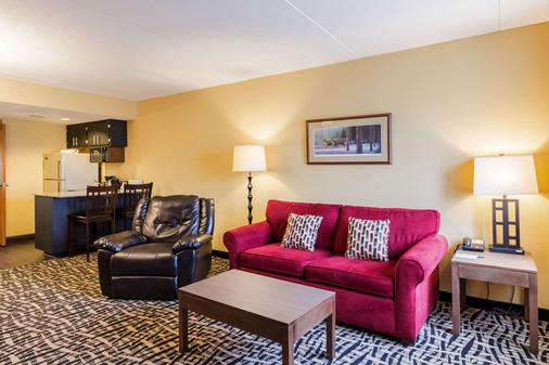 Quality Inn and Suites Mayo Clinic Area - Rochester - Living room