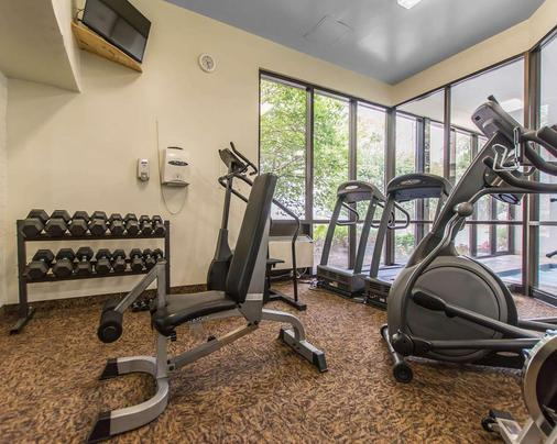 Quality Inn & Suites Bay Front - Sault Ste Marie - Gym