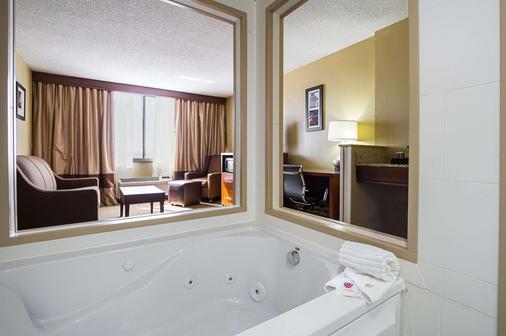 Comfort Inn Downtown - Cleveland