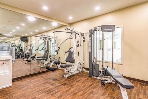 Comfort Inn & Suites - Rapid City - Gym