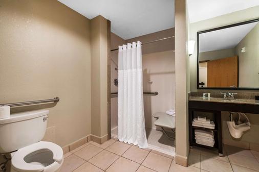 Comfort Suites Tampa Airport North - Tampa - Bathroom