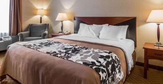 Rodeway Inn & Suites - Salina - Bedroom