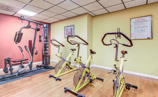 Comfort Inn & Suites Athens - Athens - Gym
