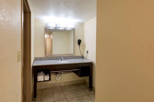 Clarion Hotel Detroit Metro Airport - Romulus - Bathroom