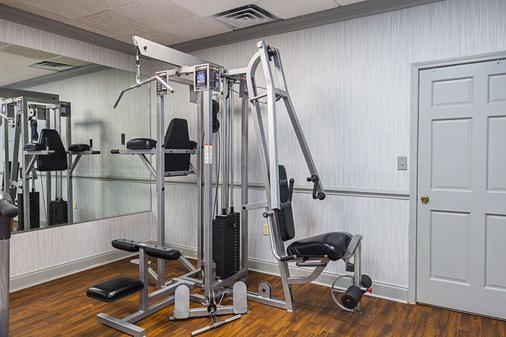 Quality Inn and Suites Haywood Mall Area - Greenville - Gym