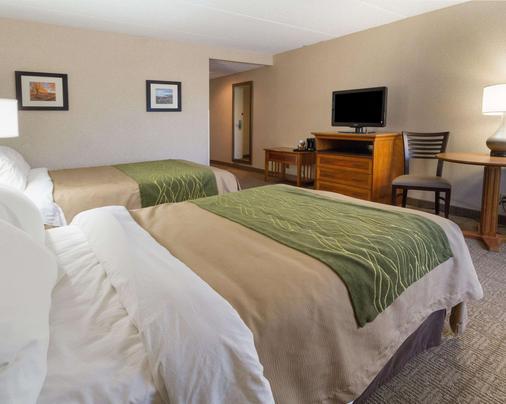Comfort Inn Carrier Circle - Syracuse - Bedroom