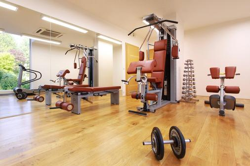 Rezidence Vysehrad - Prague - Gym
