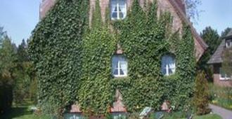 Hotel Sudwind Sylt - Sylt - Building