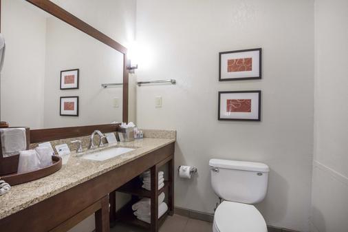 Comfort Inn Downtown - Memphis - Bathroom