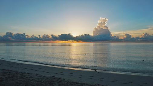 Miami Beach Resort & Spa - Miami Beach - Beach