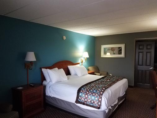Americas Best Value Inn St. Louis Downtown - St. Louis - Bedroom