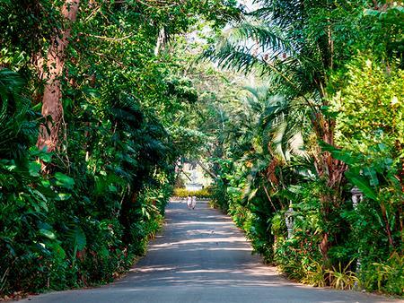 Thavorn Palm Beach Resort Phuket - Karon - Outdoor view