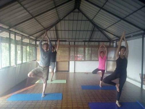 Elephantpass Ayurveda And Yoga - Kochi