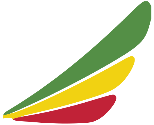 Ethiopian Airlines Enterprise
